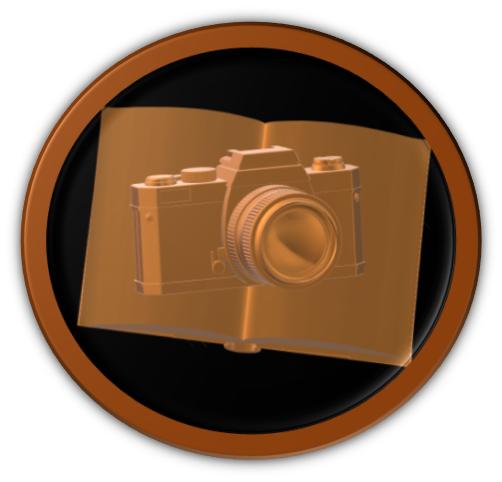 Picture Book Perfect Bronze Award