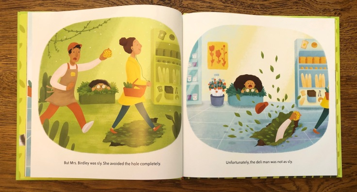 Rescuing Mrs Birdley by Aaron Reynolds and Emma Reynolds