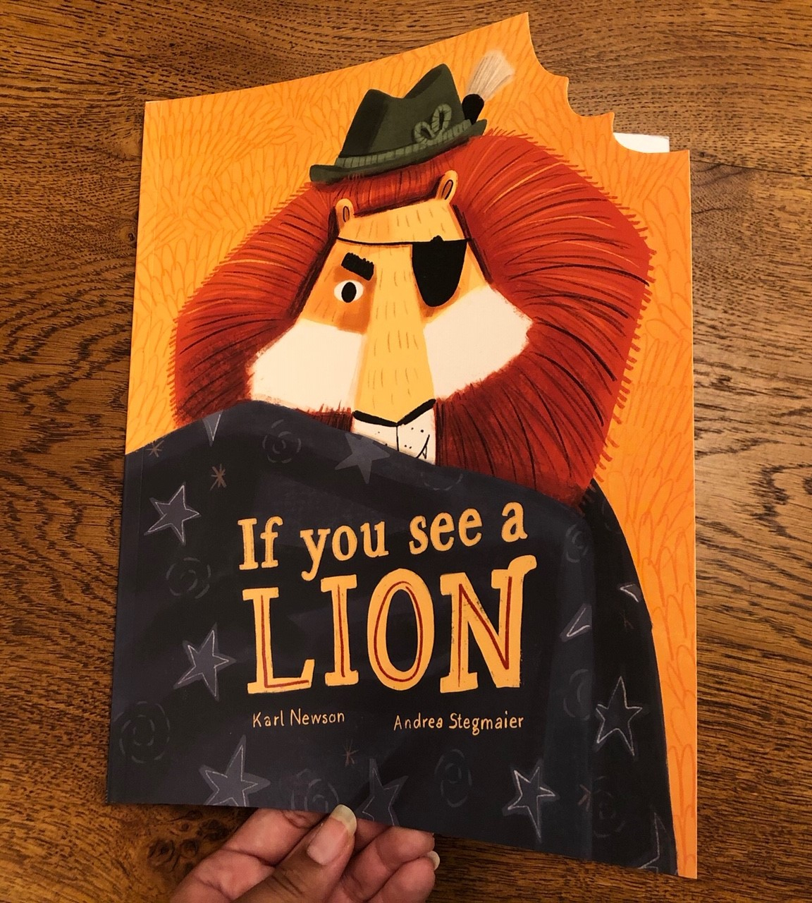 If You See a Lion by Karl Newson and Andrea Stegmaier Quarto