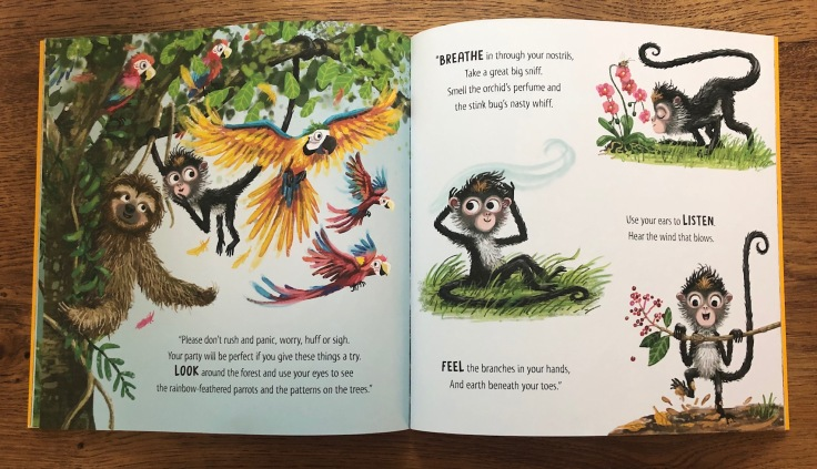 Slow Down Monkey by Dr Jess French and Eefje Kuijl Buster Books