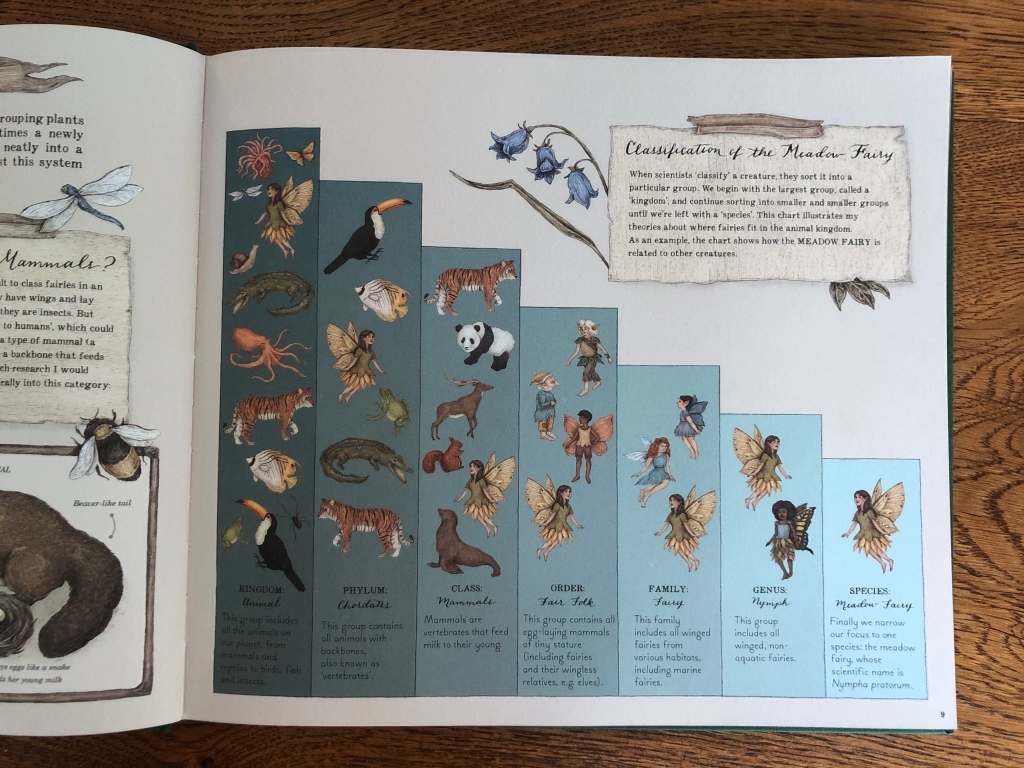 A Natural History of Fairies by Emily Hawkins & Jessica Roux Classification of a fairy