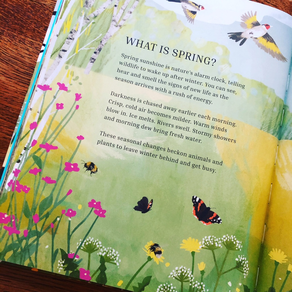 Busy Spring: Nature Wakes Up is written by Sean Taylor and Alex Morss and illustrated by Cinyee Chiu.