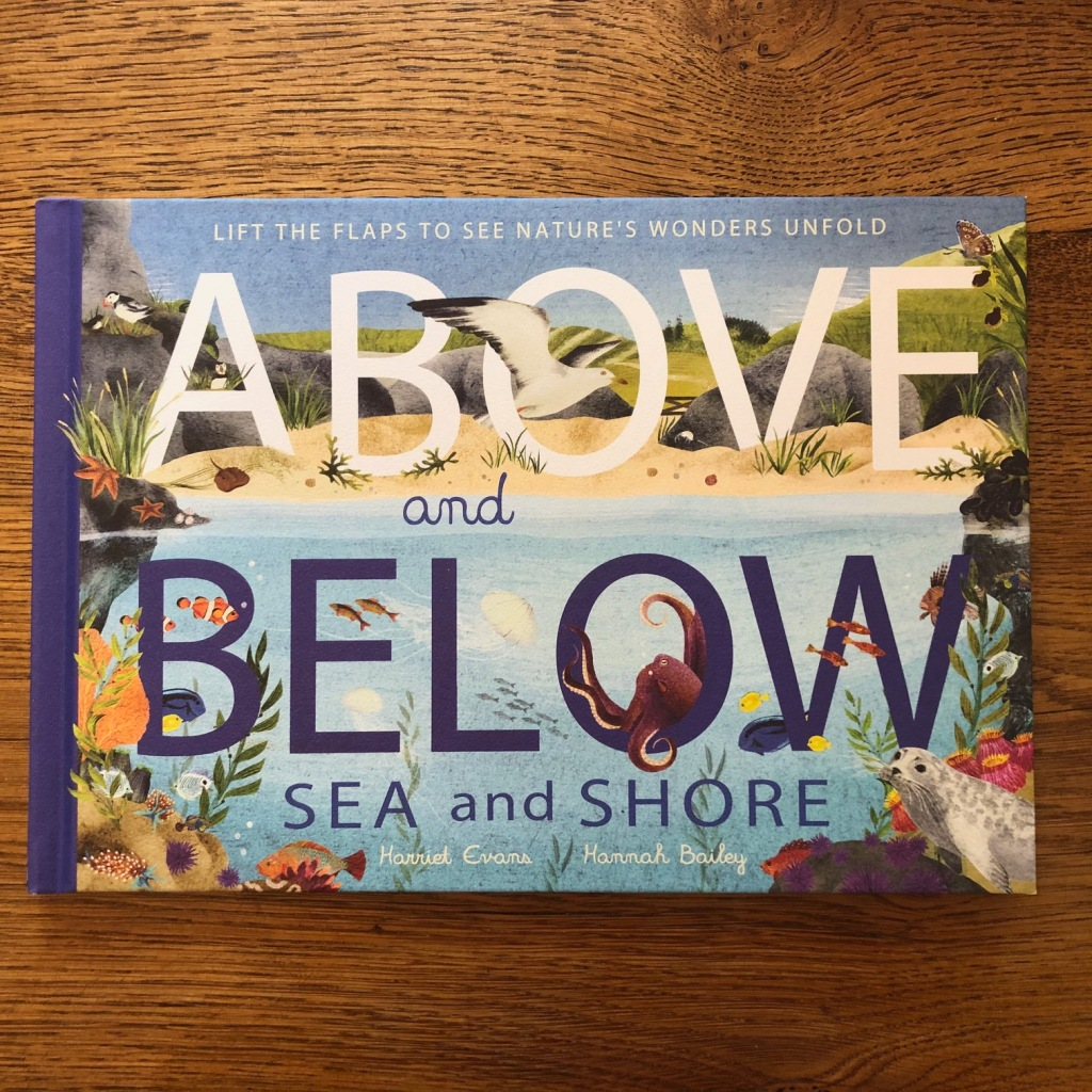 Above and Below: Sea and Shore by Harriet Evans and Hannah Bailey