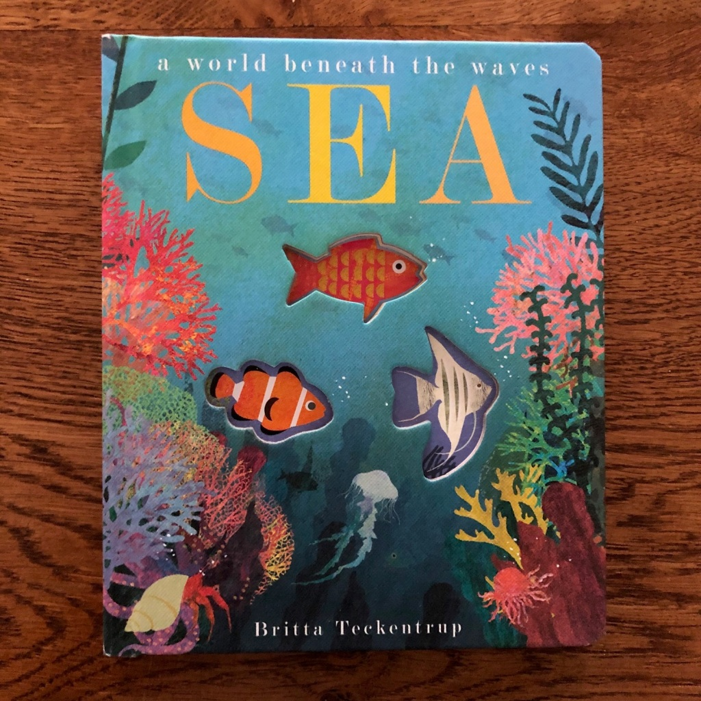 Sea: A World Beneath the Waves by Patricia Hegarty and Britta Teckentrup