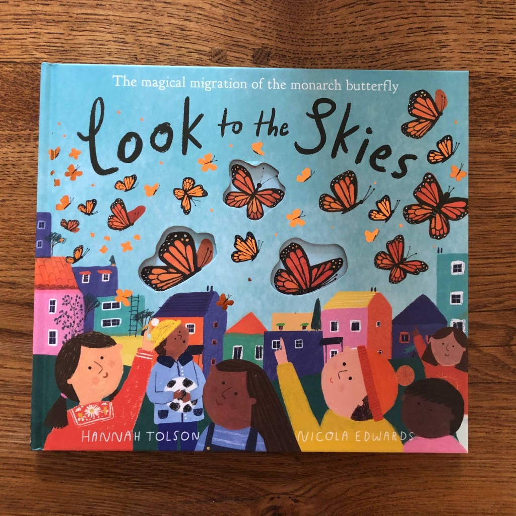 Look to the Skies by Nicola Edwards and Hannah Tolson