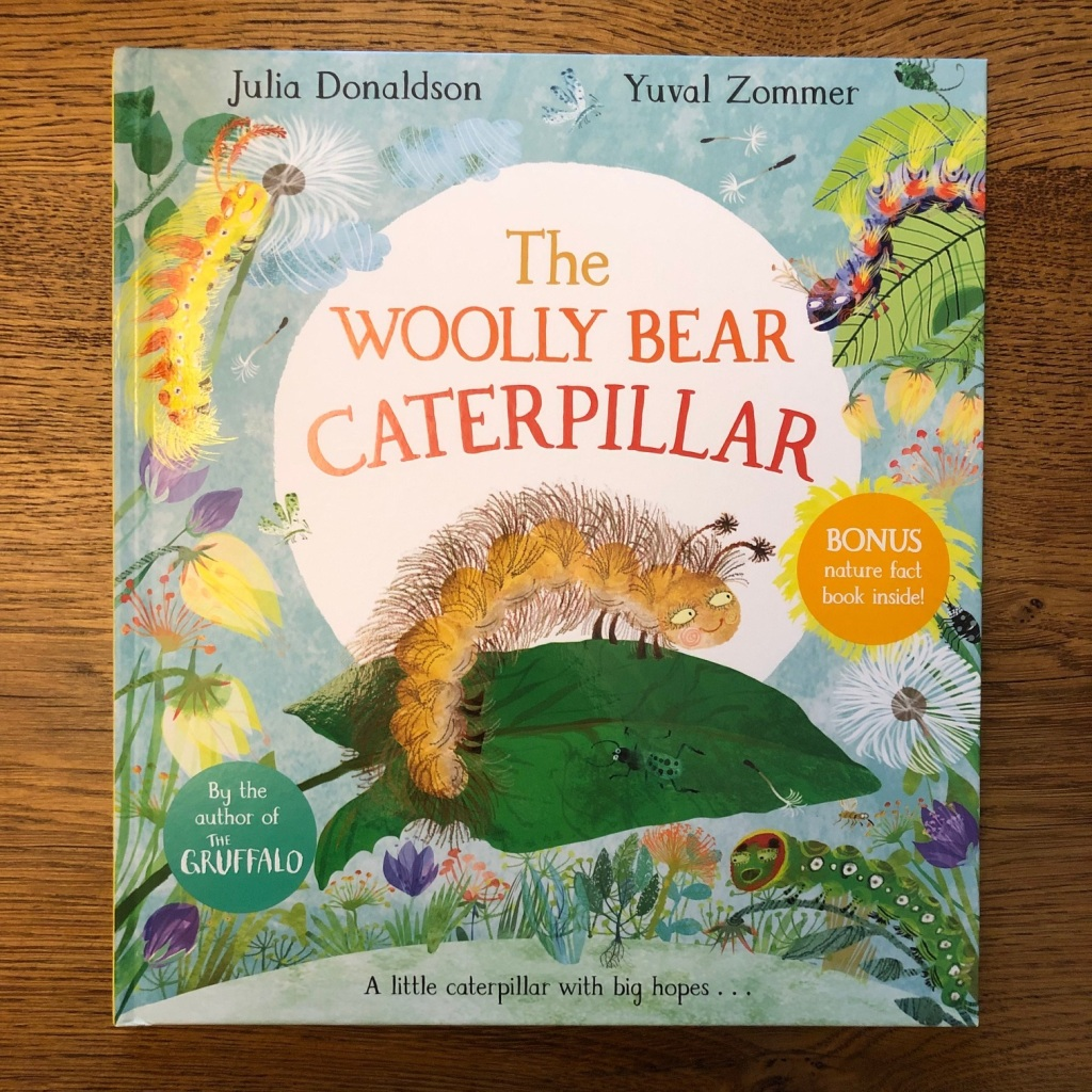 The Woolly Bear Caterpillar by Julia Donaldson and Yuval Zommer